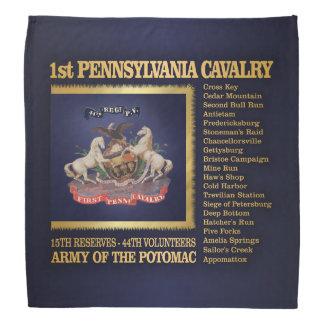 1st Pennsylvania Cavalry (BH) Bandana