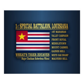 1st Special Battalion, Louisiana Infantry (BA2) Poster