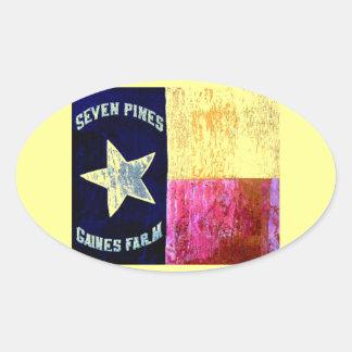 1st Texas Infantry, Hood's Brigade, Lone Star Flag Oval Sticker