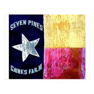 1st Texas Infantry, Hood's Brigade, Lone Star Flag Postcard