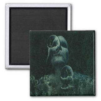 1water skull bluegreen magnets