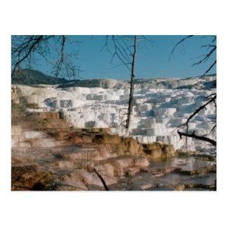 2003 - Yellowstone 01 Postcard