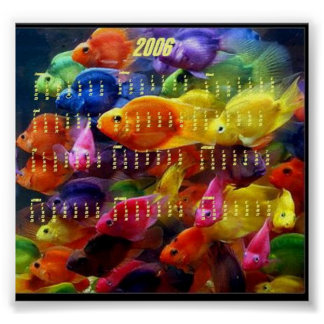 2006 Fish Calendar Poster