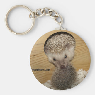20081206_0055, Moving Hedgehog Keychain