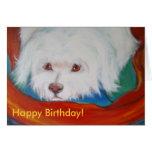 2008 03 24 002-41, Mans best friend! Greeting Card