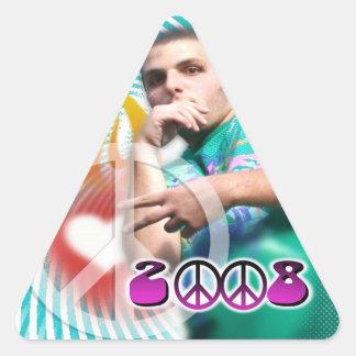 2008 kyle triangle sticker