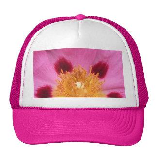 2009-1005 hat