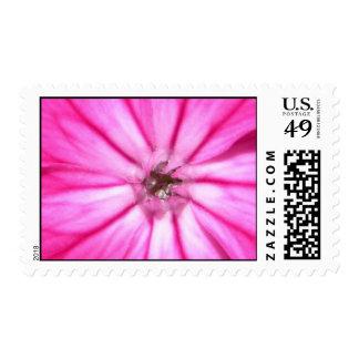 2009-1011 Stamp