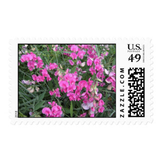 2009-7002 TIMBRES POSTALES