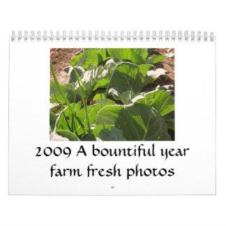 2009 A Bountiful Year Calendar
