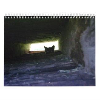 2009 amando el calendario salvaje del gato de