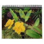 2009 Calendar: A Year of Orchids from Hawaii Calendar