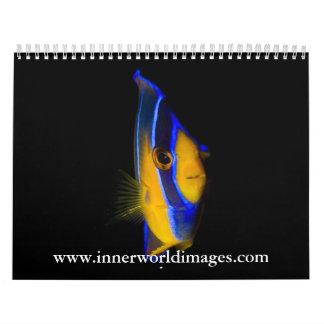 2009 InnerWorld Images Calendar