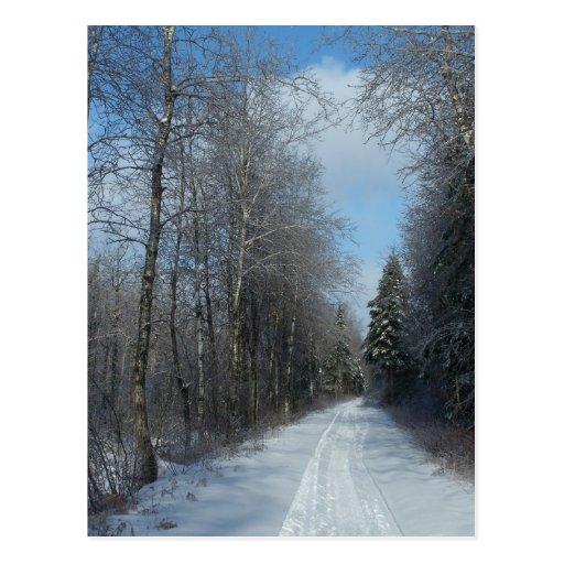 2009_Maine_Winter_18 Postal