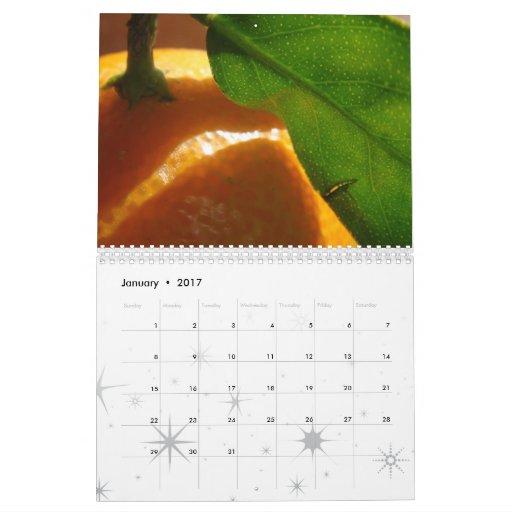 2009 Nature Calendar
