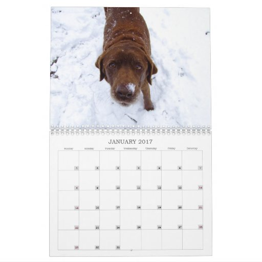 2009 Photography Calender Calendar
