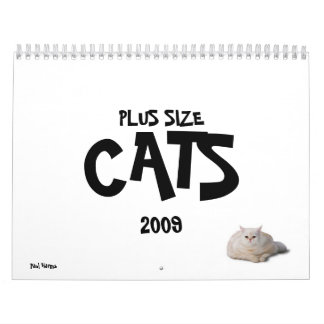 2009 PLUS SIZE CATS CALENDAR