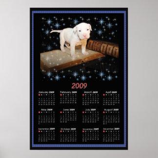 2009 Wall Poster Calendar of Luna
