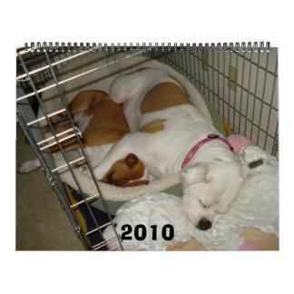 2010 American Bulldog Calendar