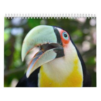 2010 calendario, pájaros del Brasil