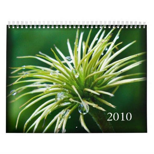 2010 Color Photography Calendar