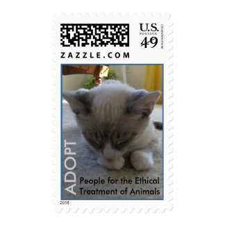 2010 Cutest Cat Contest Winner Stamp