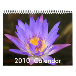 2010 Flower Power Calandar Calendar