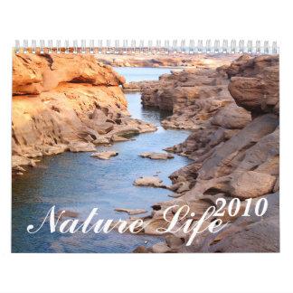 2010 , Mountain river / stone Mountain Calendar