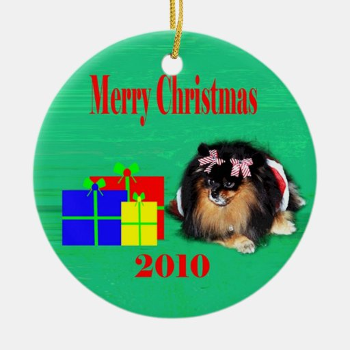 2010 peb 2 Double-Sided ceramic round christmas ornament