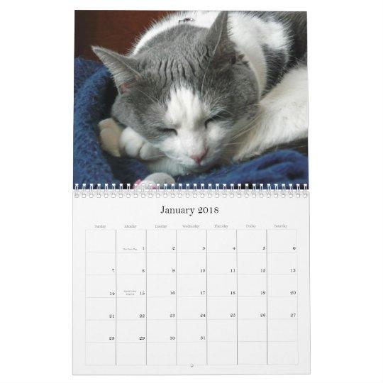 2010 with Guru Belly Calendar