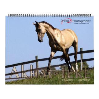2011 Akhal-Teke Horses Calendar