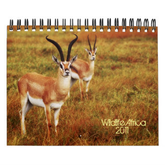 2011 Calendars - Wildlife Africa - small size
