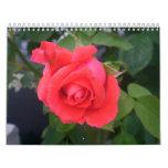 2011 flores del calendario para cada estación