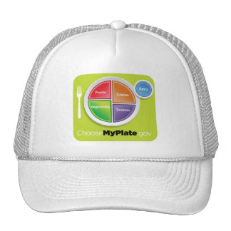 2011 Food Pyramid Choose My Plate hat