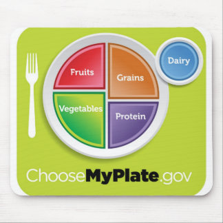 2011 Food Pyramid Choose My Plate mousepad