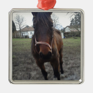 2011 foto 079.jpg metal ornament