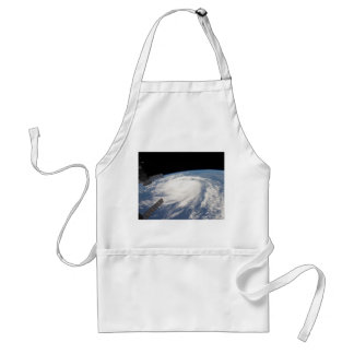 2011 Hurricane Katia From Space Adult Apron
