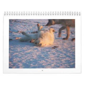 2011 lobos árticos calendarios de pared
