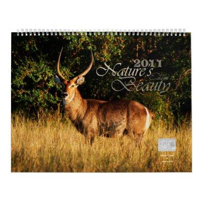 2011 Nature's Beauty customizable - Huge size Wall Calendars