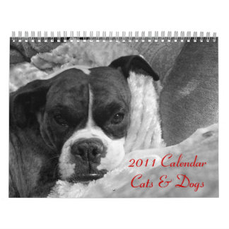 2011 Pet Calendar: Cats & Dogs Calendar