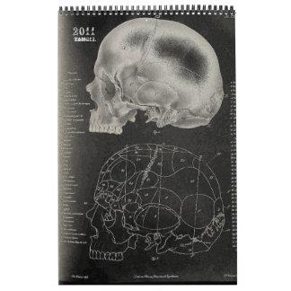 2011 SKULL/SKELETON/ANATOMY - Tang13. Calendario De Pared