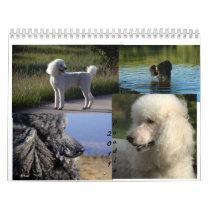 2011 Standard Poodle Calender Calendar