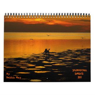 2011 steinhatchee sunsets calendar