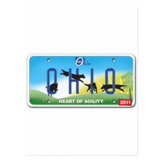 2011 Team Ohio Agility Postcard