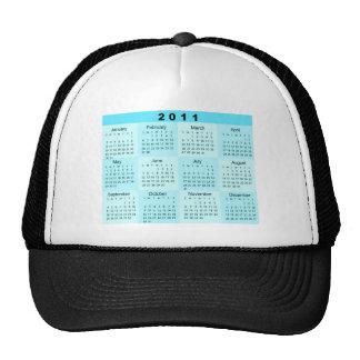 2011 Year at a Glance Calendar Hat