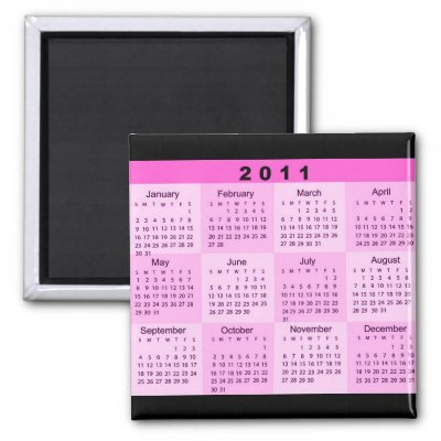 2011 Year at a Glance Calendar Magnet by MidnightDreamer