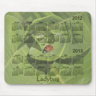 2012-2013 Ladybug Calendar Mousepad