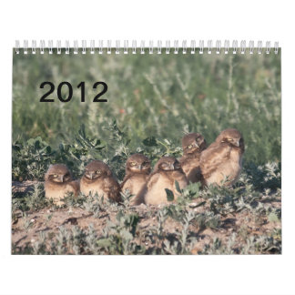 2012 Burrowing Owls Calendar