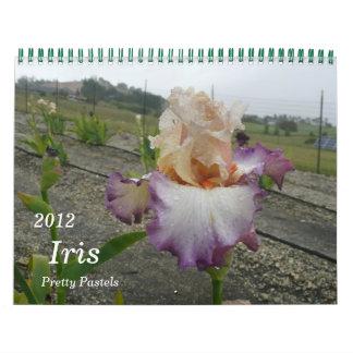 2012, calendario del iris, pasteles bonitos