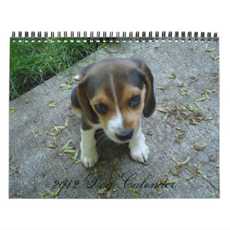 2012 Cute Dogs Calendar
